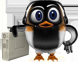 Dole Solus Informatiques- Développement de logiciel, création de site Web, Maintenance, Formation